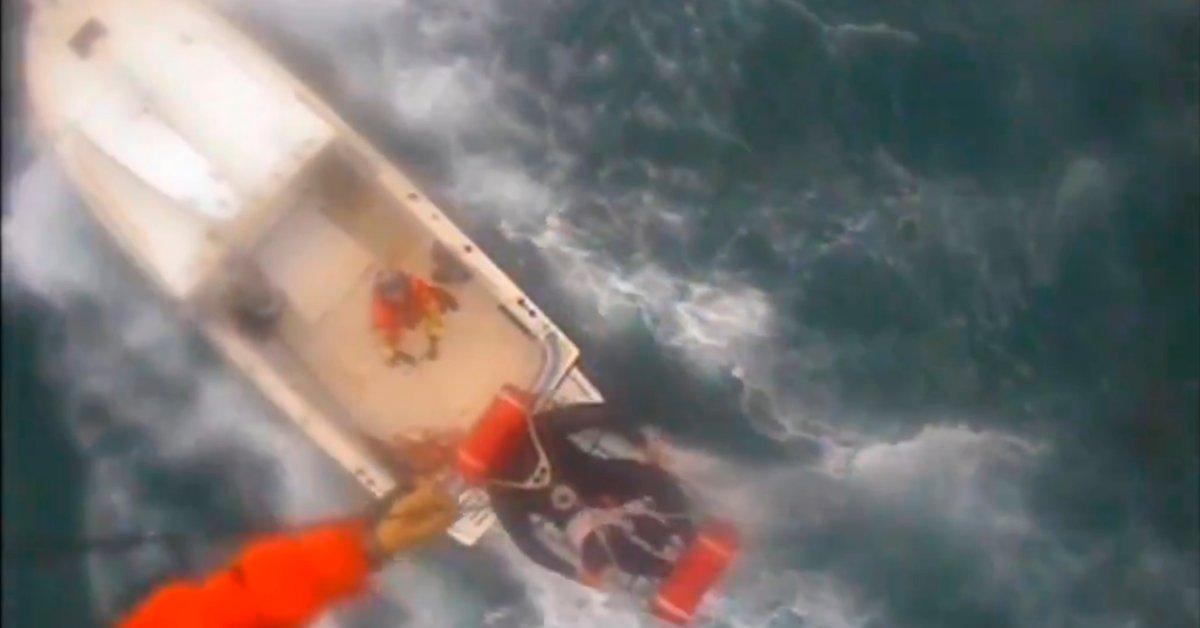 Акула атакует серфера у южной Калифорнии в «ужасающей ситуации»: береговая охрана thumbnail