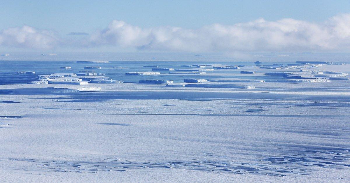Чилийский военный самолет, перевозивший 38 человек, пропал без вести по пути в Антарктиду thumbnail