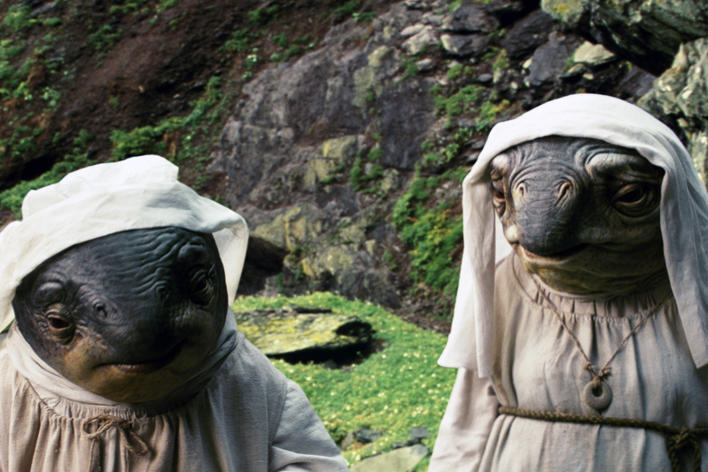 Caretakers in Star Wars: The Last Jedi