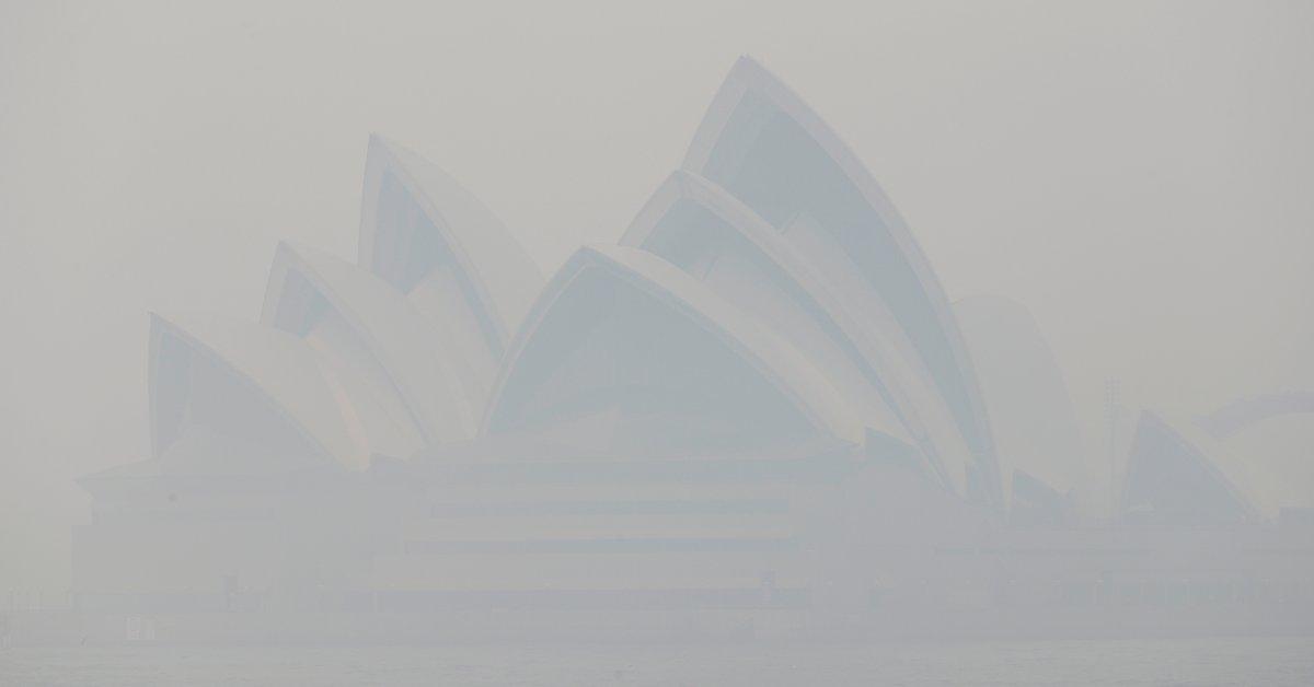 «Токсичность очень, очень высокая». Сидни задыхается в опасной дымке при распространении лесных пожаров thumbnail