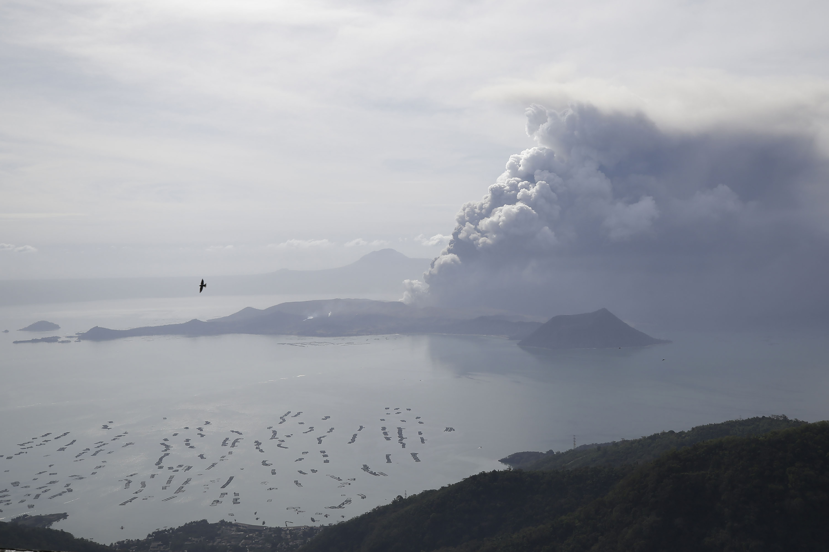 Taal Volcano continues to spew ash on Monday Jan. 13, 2020, in Tagaytay, Cavite province, south of Manila, Philippines. Red-hot lava gushed out of the Philippine volcano Monday after a sudden eruption of ash and steam that forced villagers to flee en masse and shut down Manila's international airport, offices and schools.