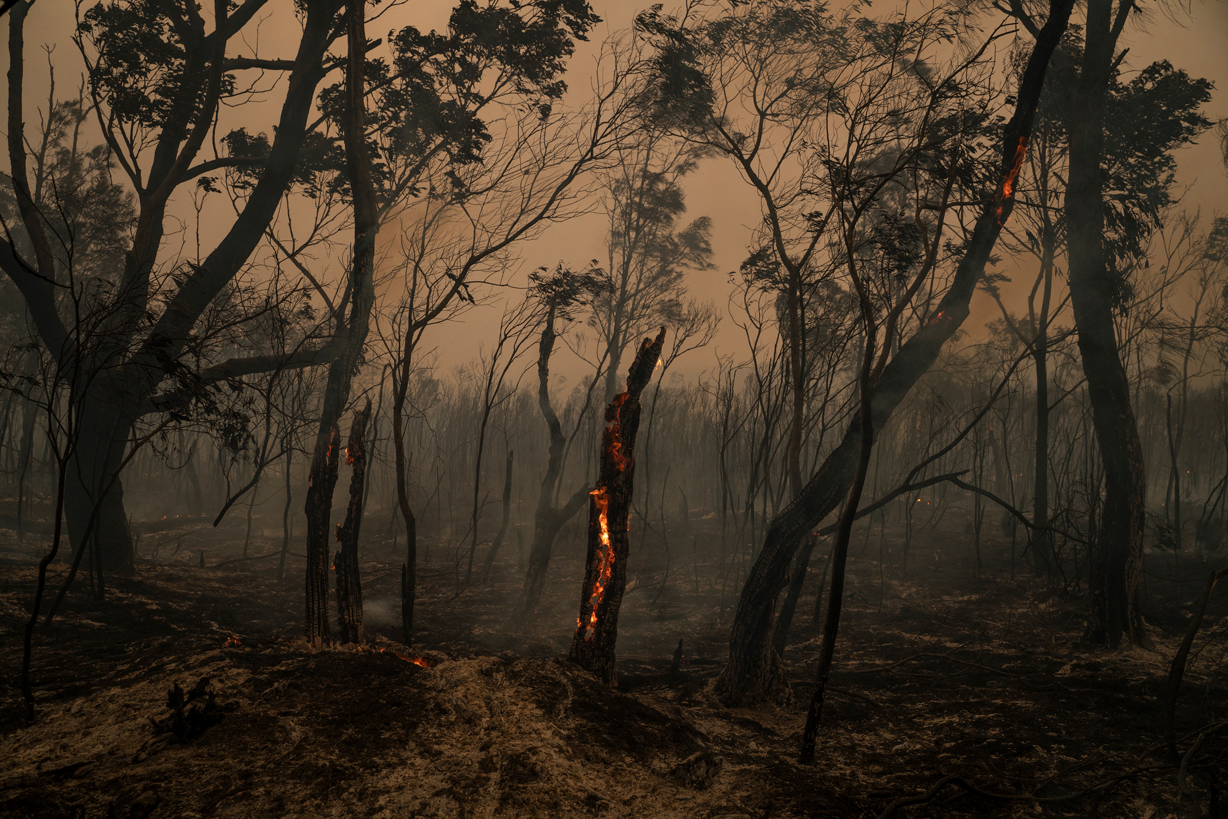Members of the Rural Fire Service back-burn bushland near Burrill Lake in New South Wales, Australia, on Jan. 4, 2020.