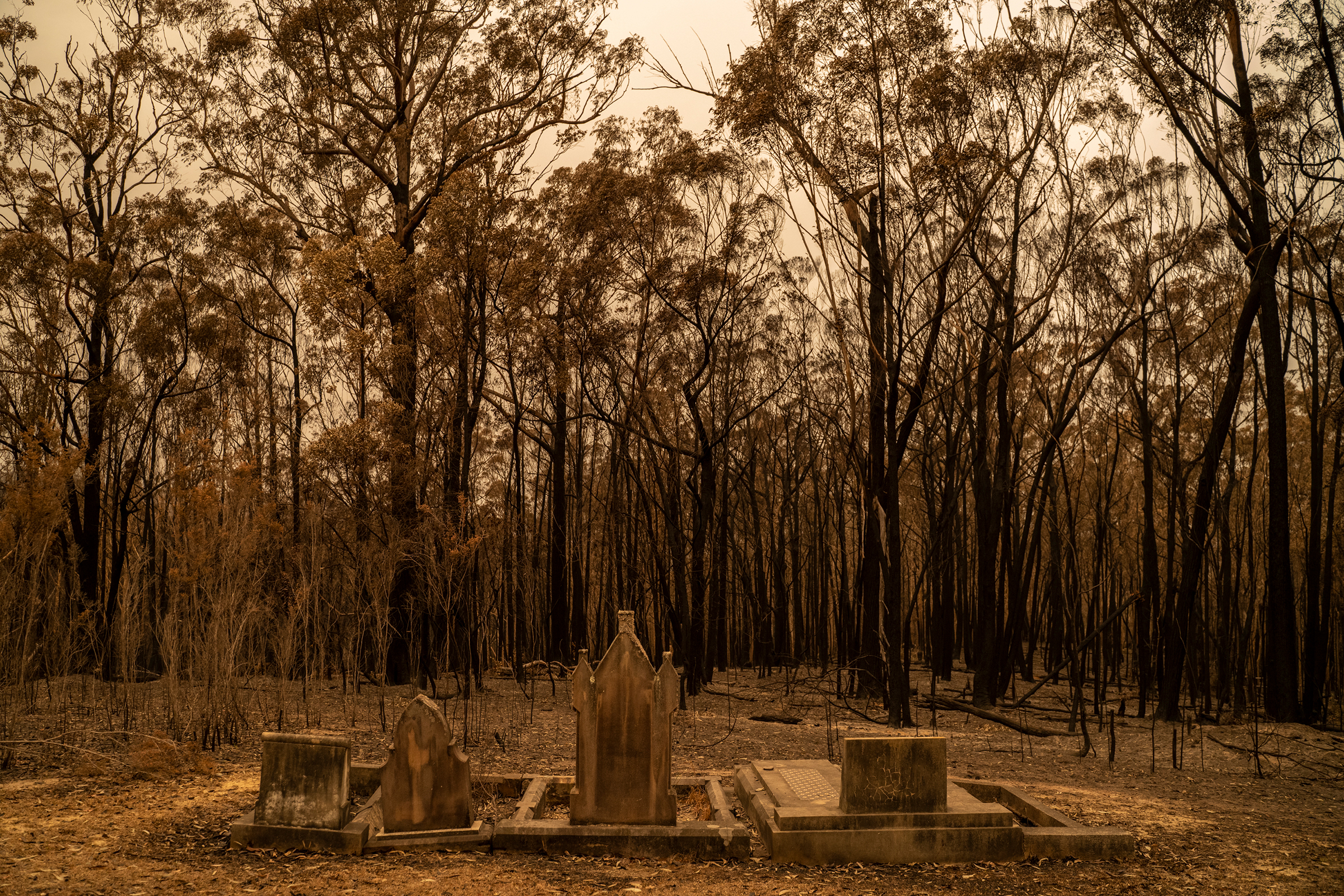 A cemetery recently hit by bushfires near Mogo, New South Wales, on Jan. 5.