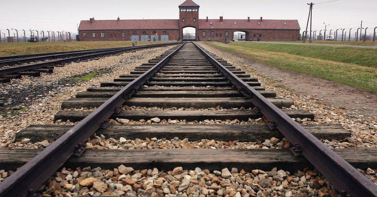 Что научил меня рассказывать о жизни в Освенциме из первых уст о языке страданий thumbnail