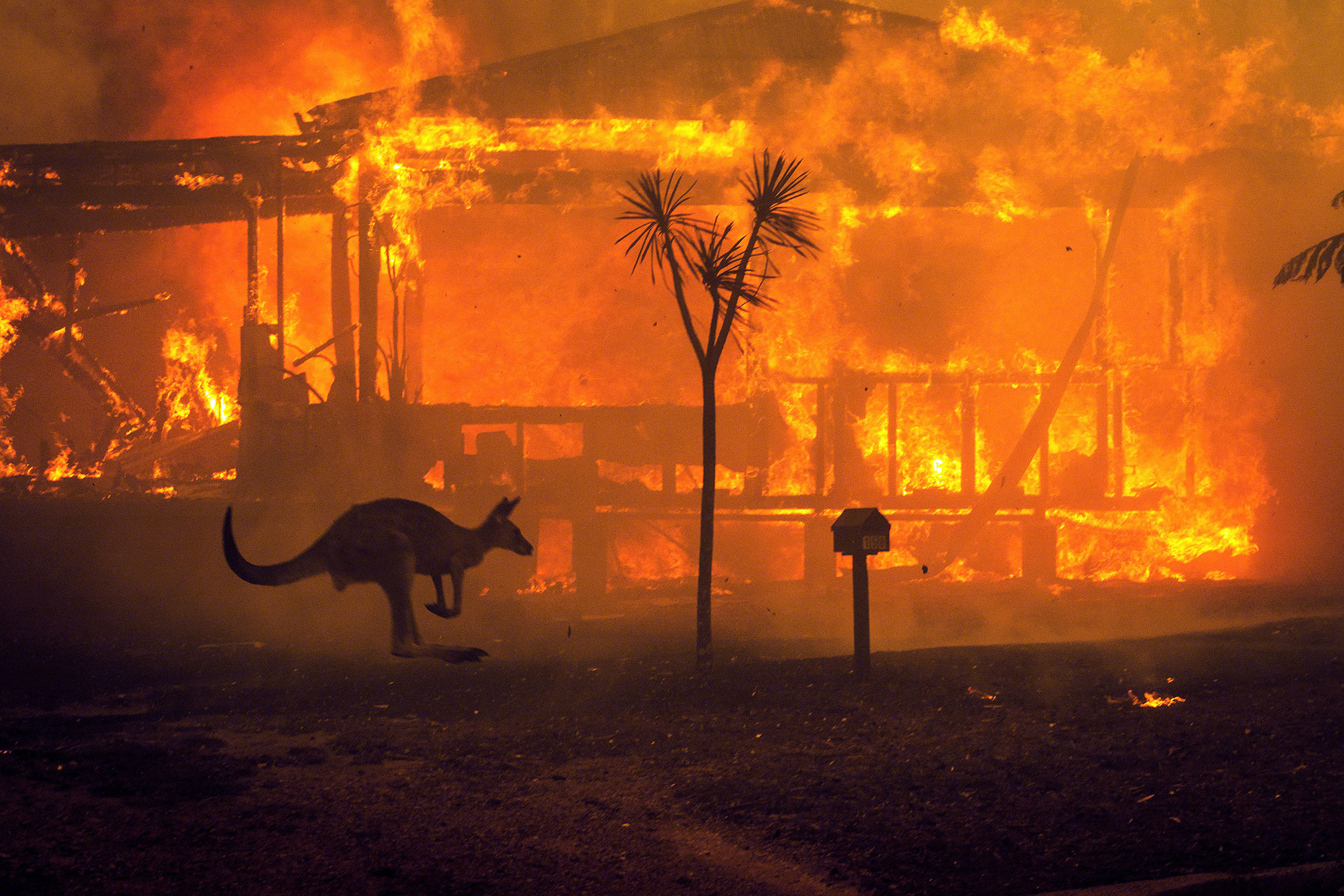 More than 15 million acres have burned across Australia this season