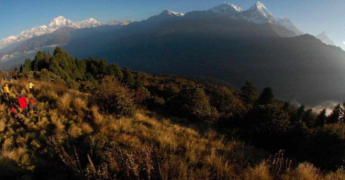 Новые лавины в Непале остановили спасательную миссию для 4 треккеров и 3 гидов thumbnail