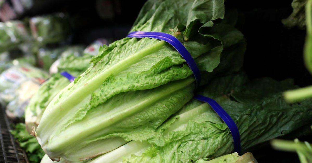 Представители органов здравоохранения заявляют, что салат ромэн безопасен для употребления в пищу, так как вспышка E. Coli в стране завершилась thumbnail