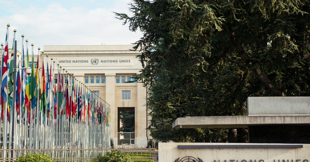 В результате «изощренного» инцидента были взломаны десятки серверов Организации Объединенных Наций thumbnail