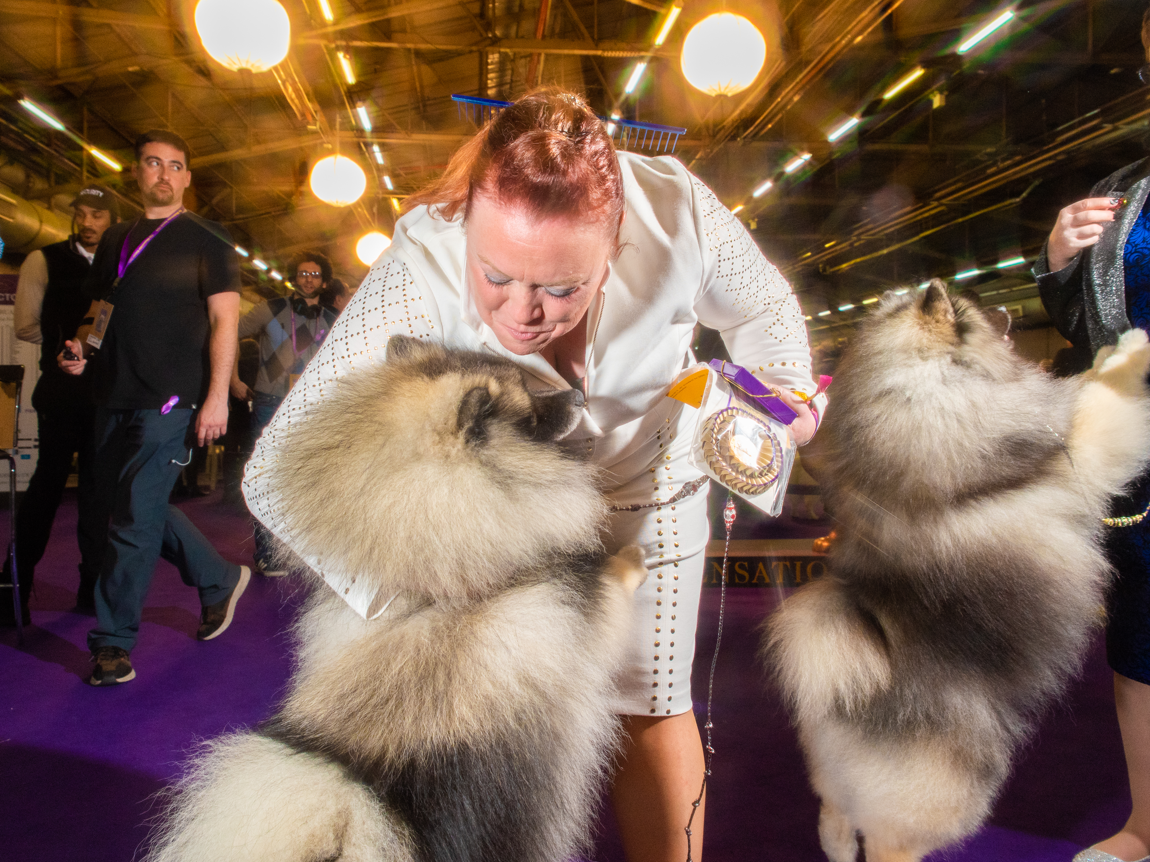 A Keeshond and their handler share a moment at Pier 94