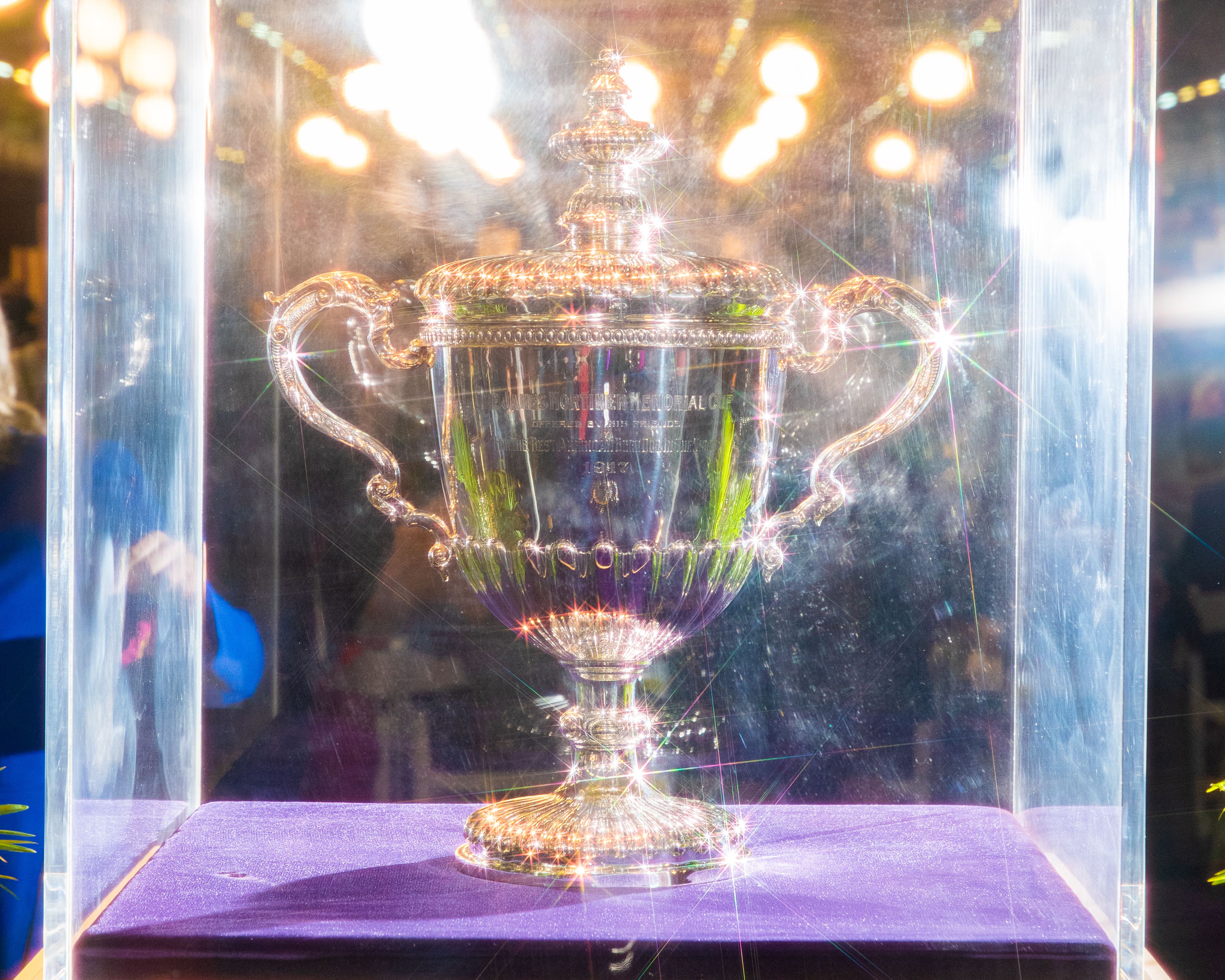 The James Mortimer Memorial Cup, photographed using a star filter, is awarded to the Best in Show
