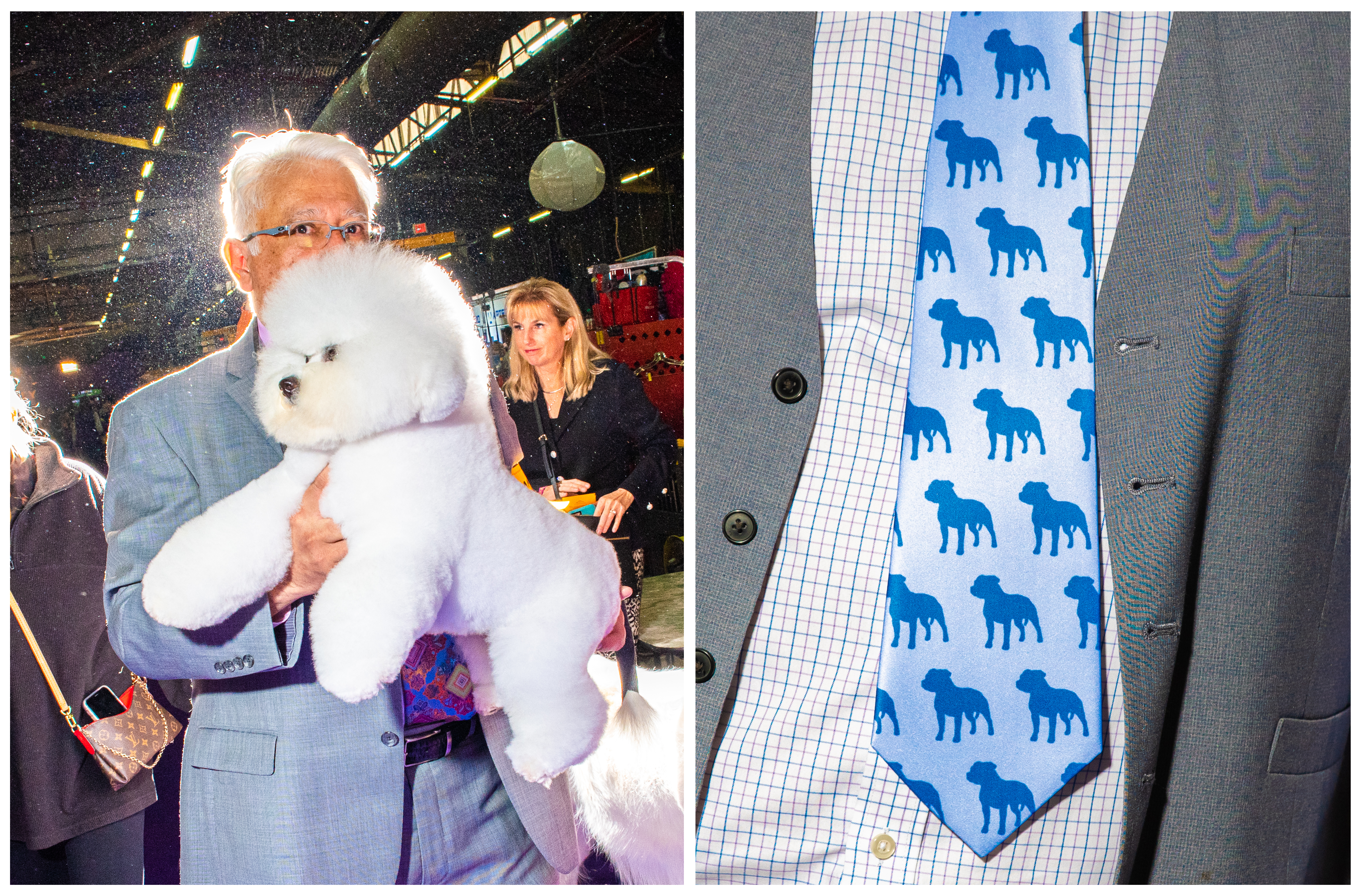 Left: A Bichon and handler Paul Flores at the Westminster Dog Show in New York City on Feb. 10. Right: A man's tie.