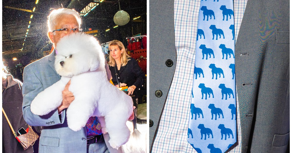 Behind the Scenes with the Stars of the Westminster Dog Show
