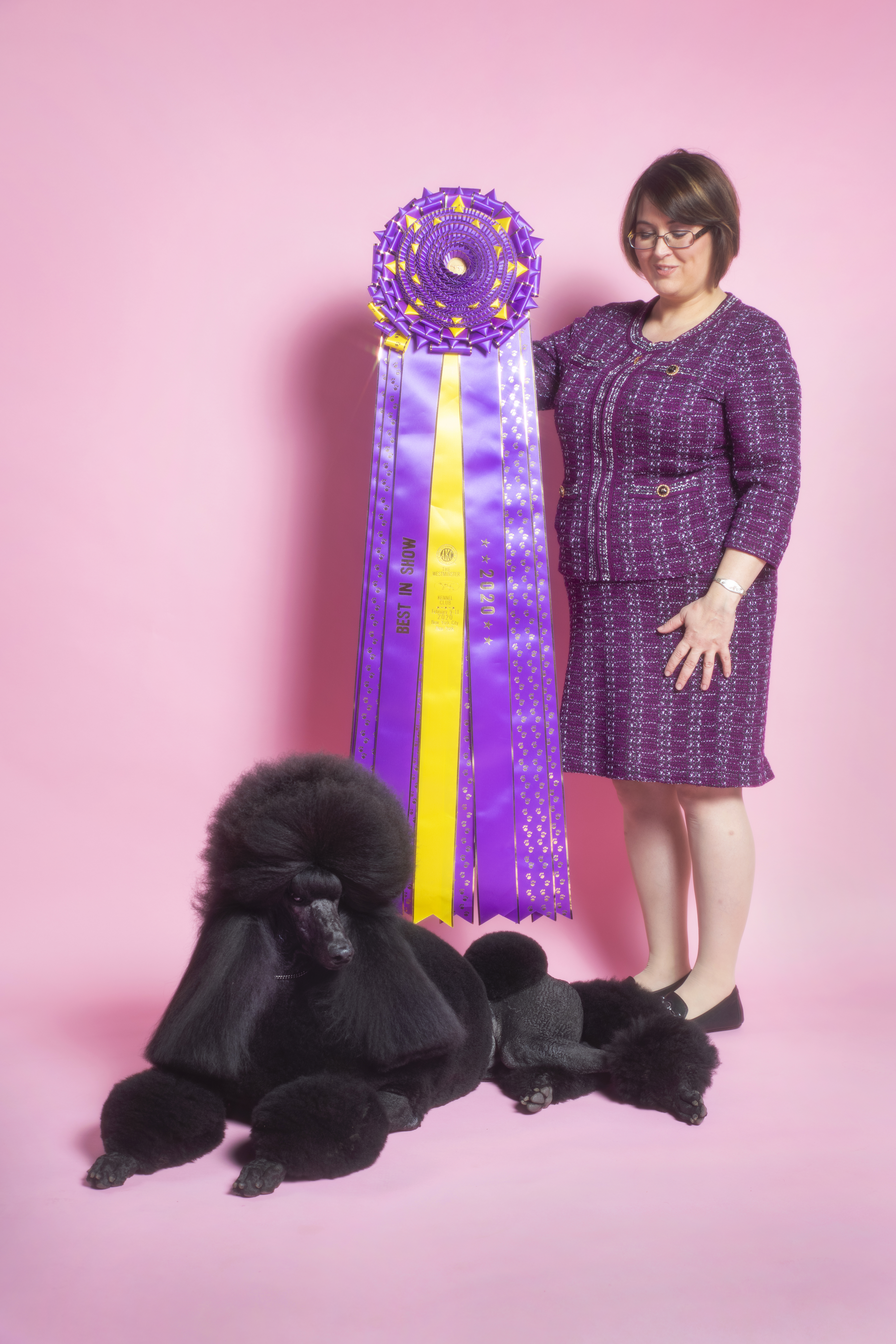 Siba the Standard Poodle poses for a portrait at the TIME studio on Feb. 12