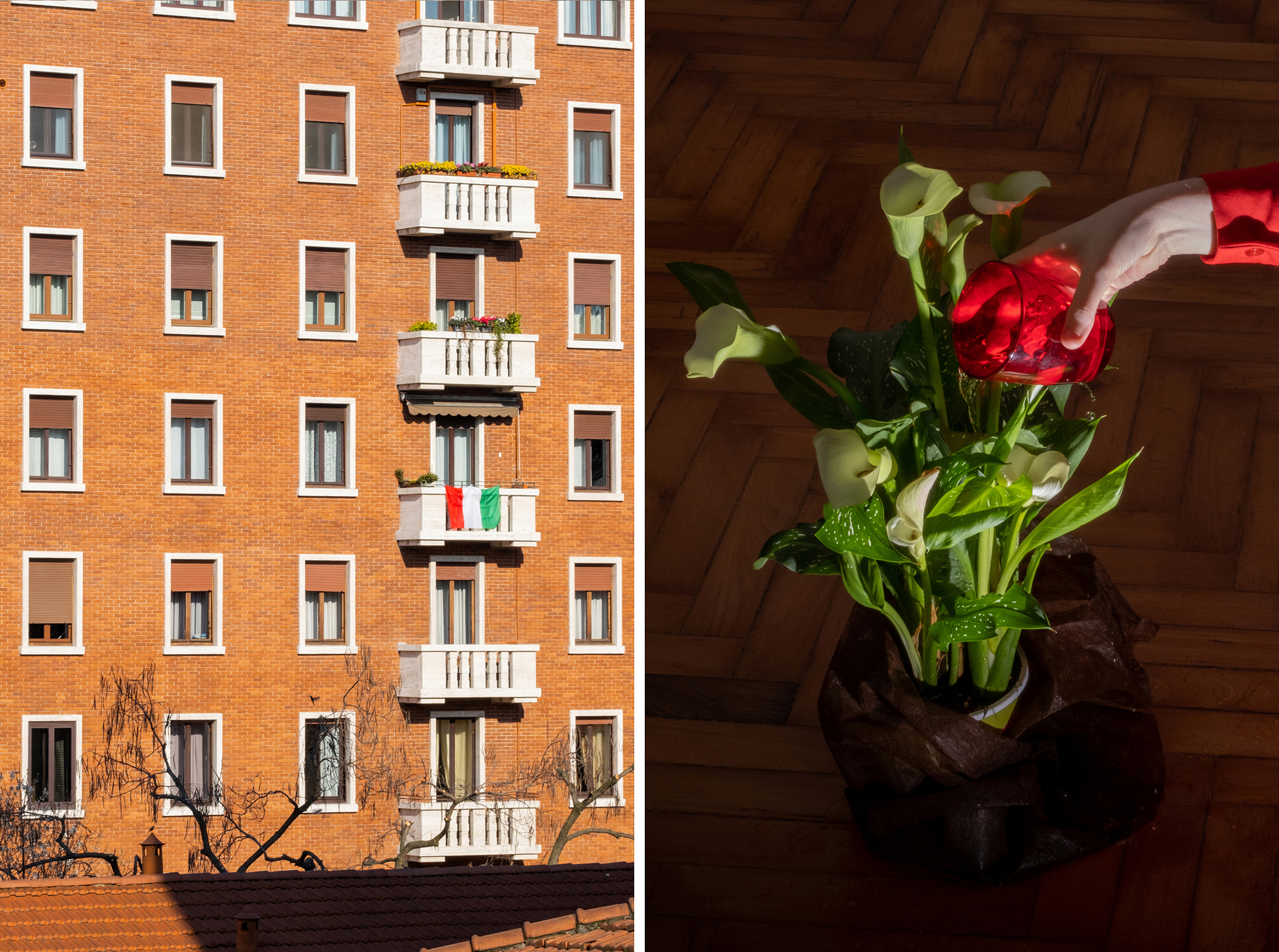 Left: 3:50 P.M. View from the balcony; Right: 3:40 P.M. Taking care of the plant