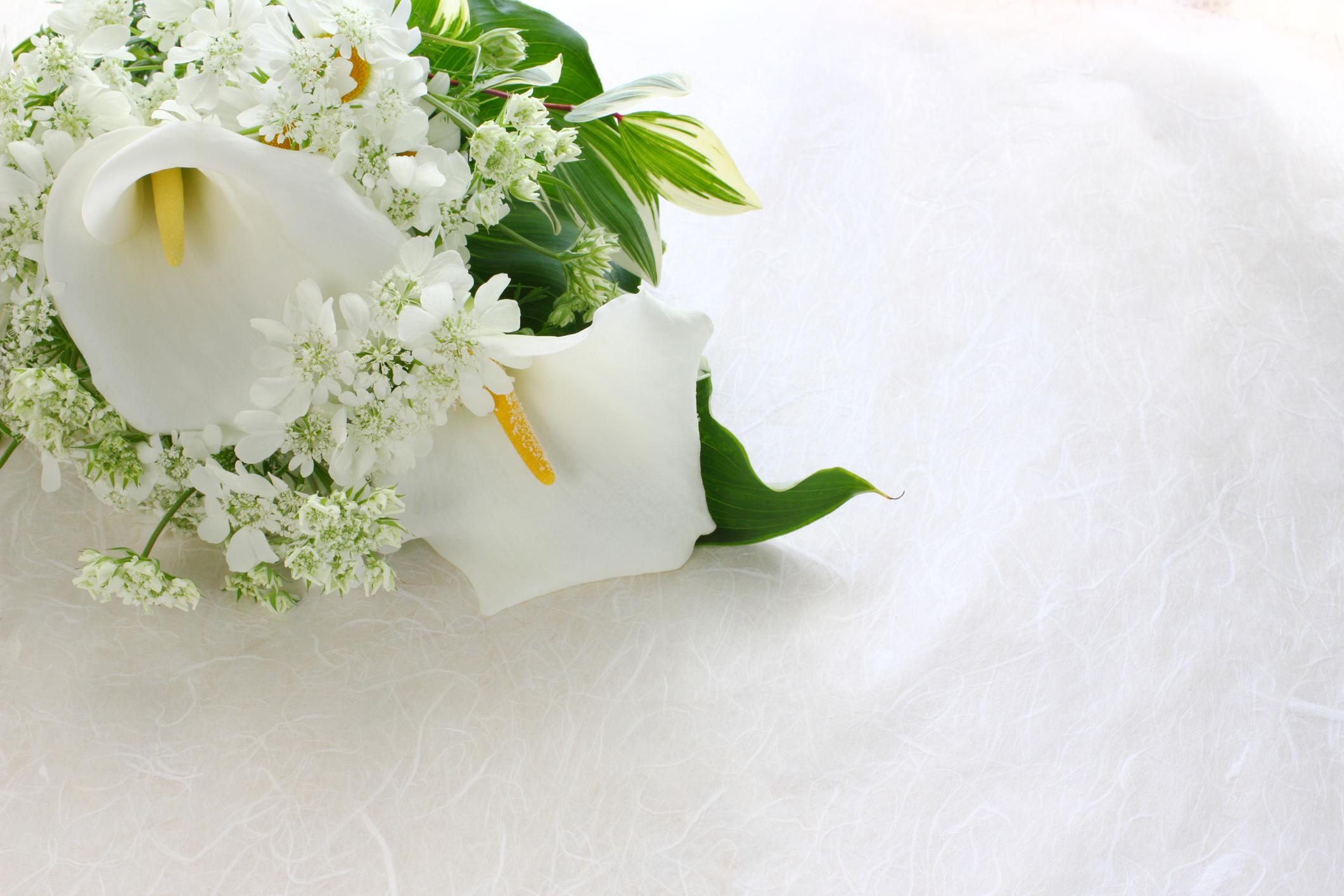 white flowers design animal crossing