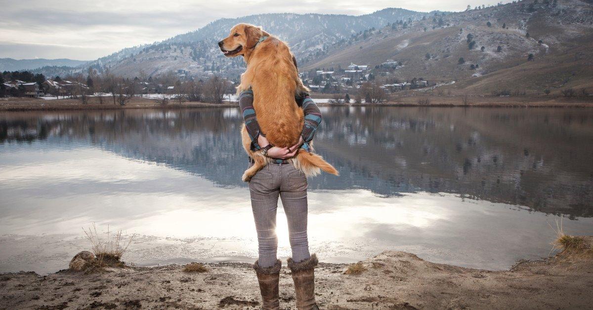 Маленькая девочка, танцующая с собакой, которая действительно может двигаться, вызывает радость thumbnail