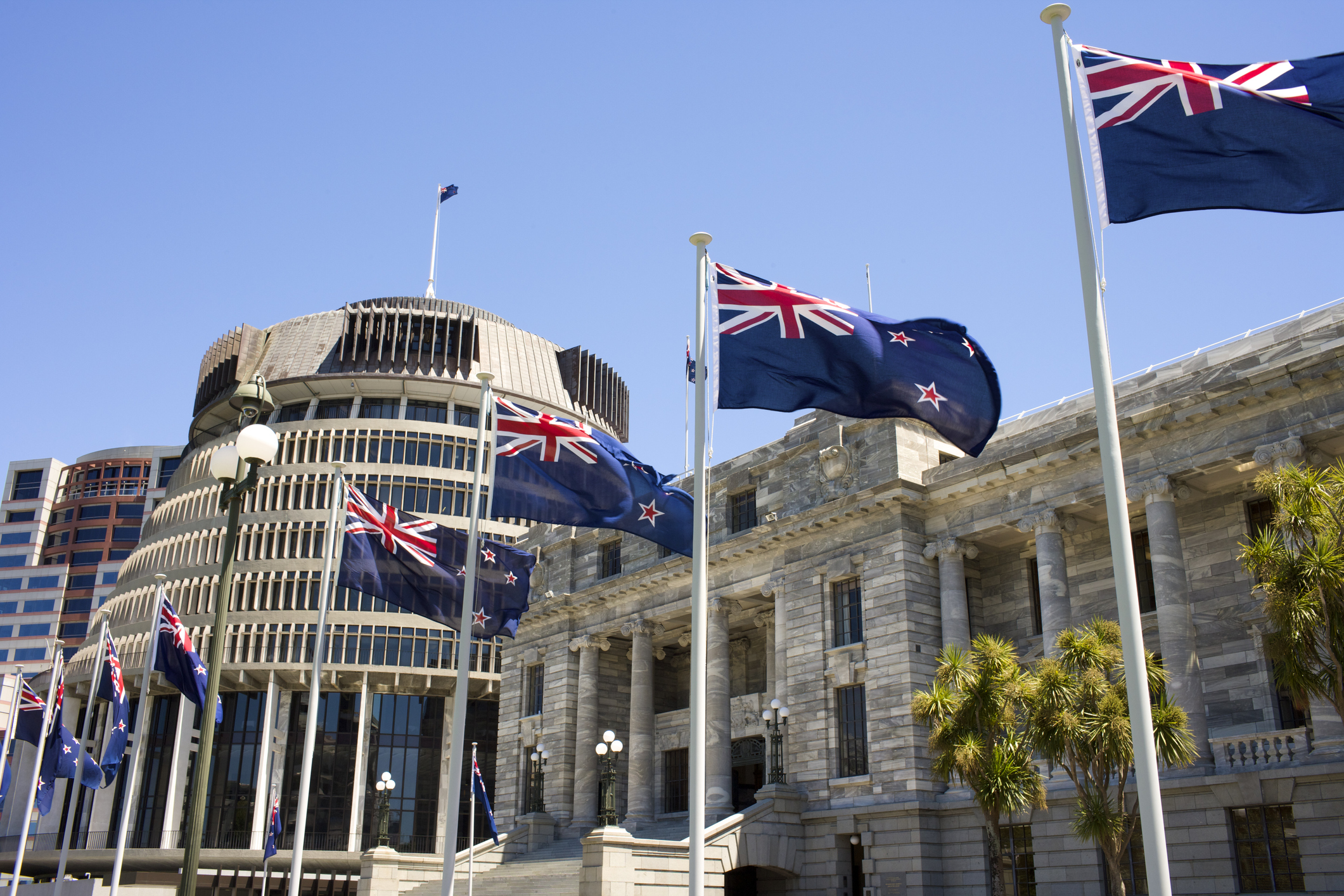 New Zealand flags fly in front of Parliament buildings in Wellington.