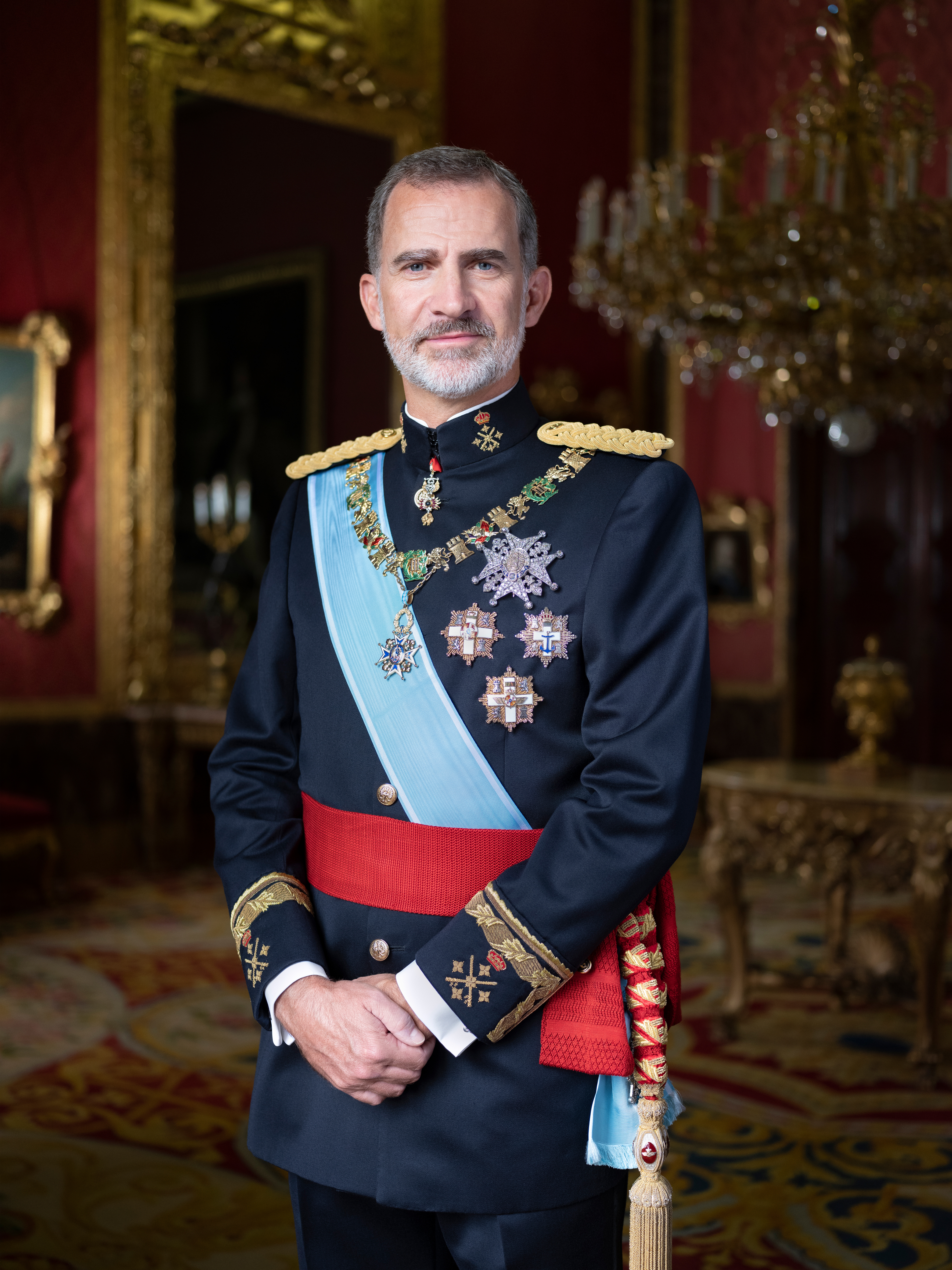 This handout image provided by the Spanish Royal Household shows Official photograph of His Majesty King Don Felipe VI..