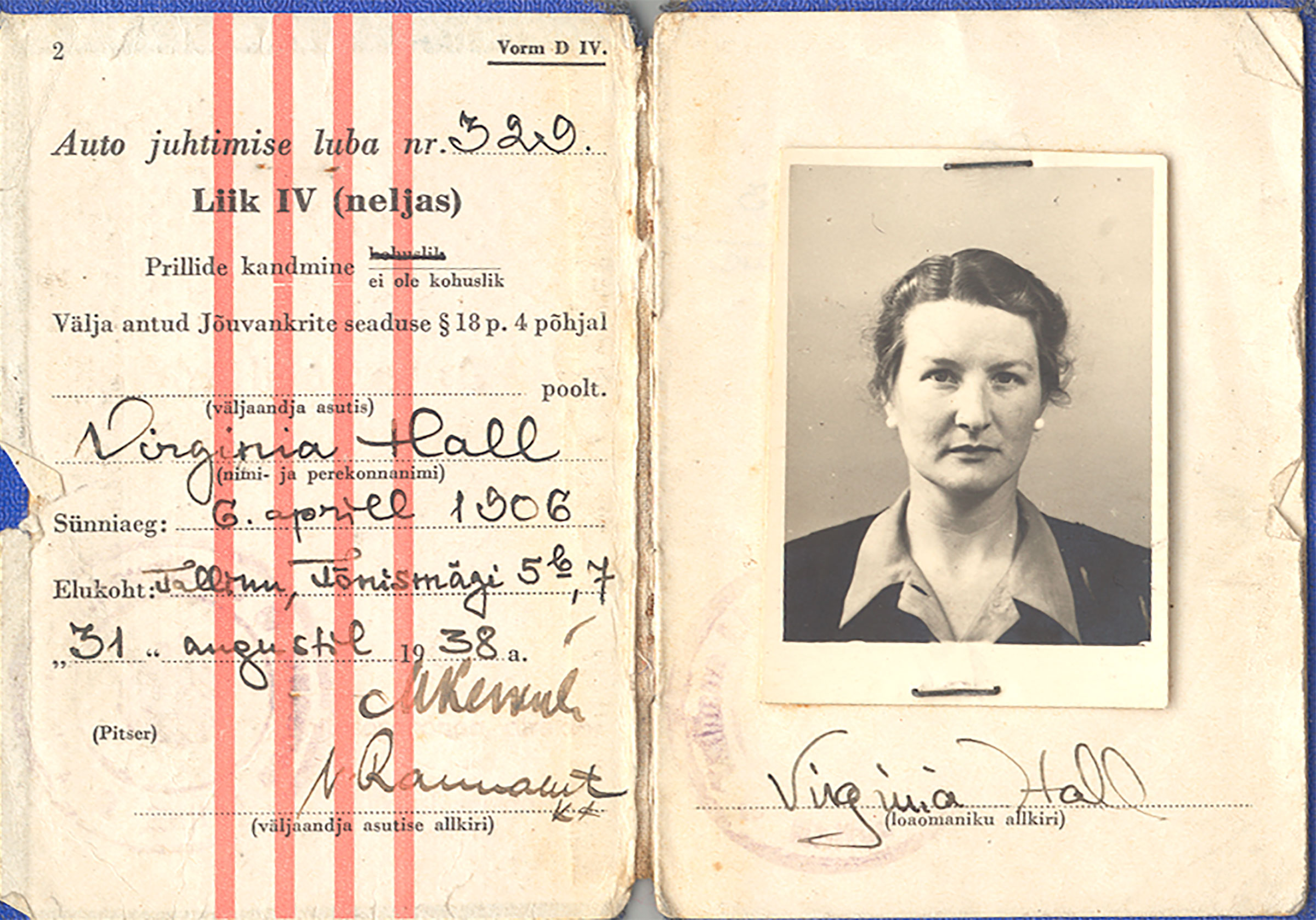 Virginia Hall's driver license, 1930s.