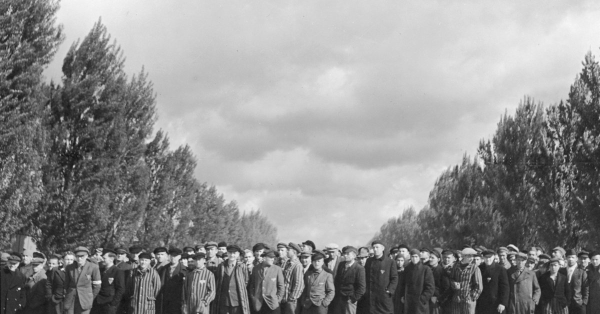 Long-Forgotten Cables Reveal What TIME's Correspondent Saw at the Liberation of Dachau