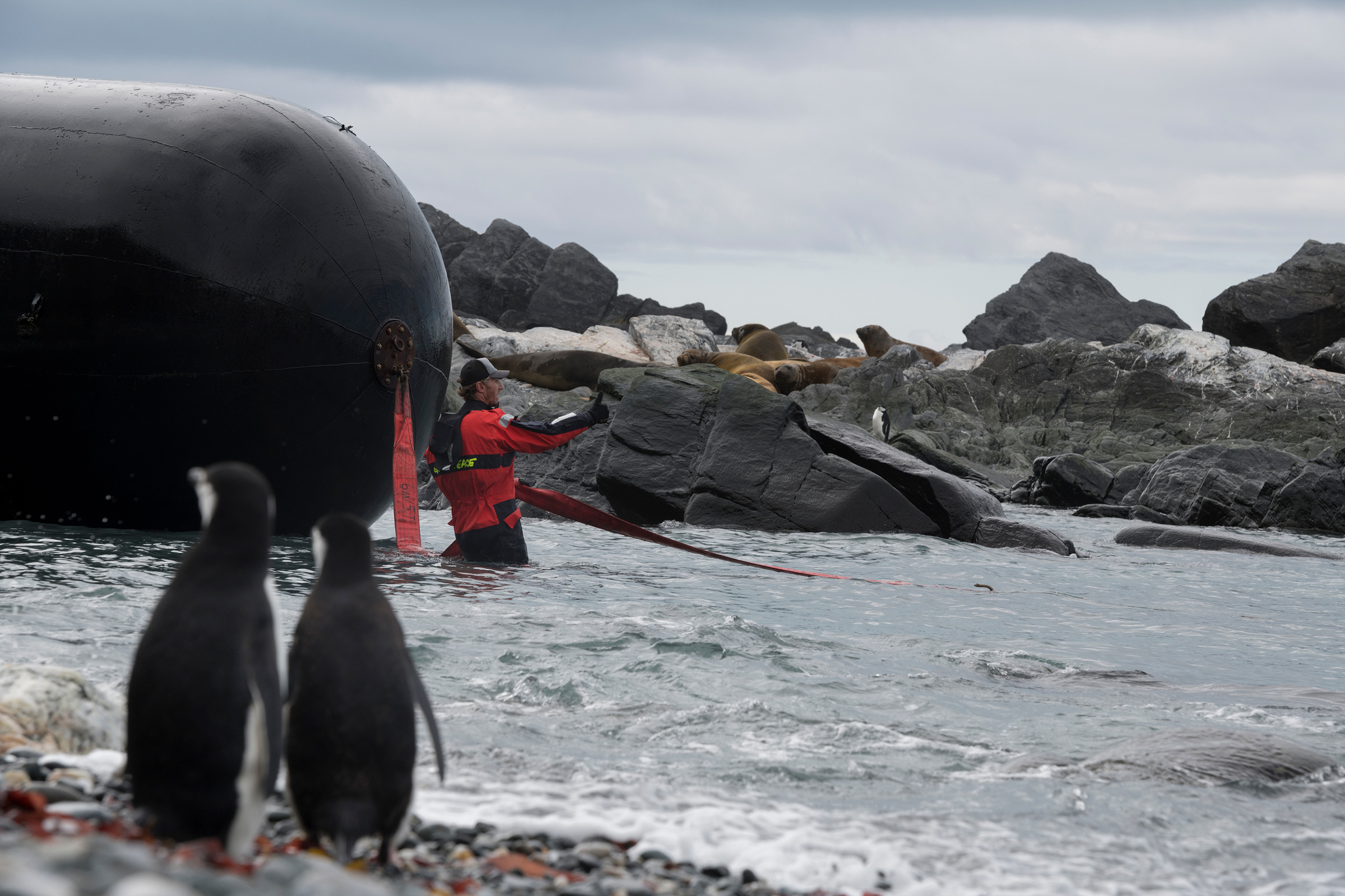 A Greenpeace crew removes a large plastic boat fender left on a beach in Antarctica