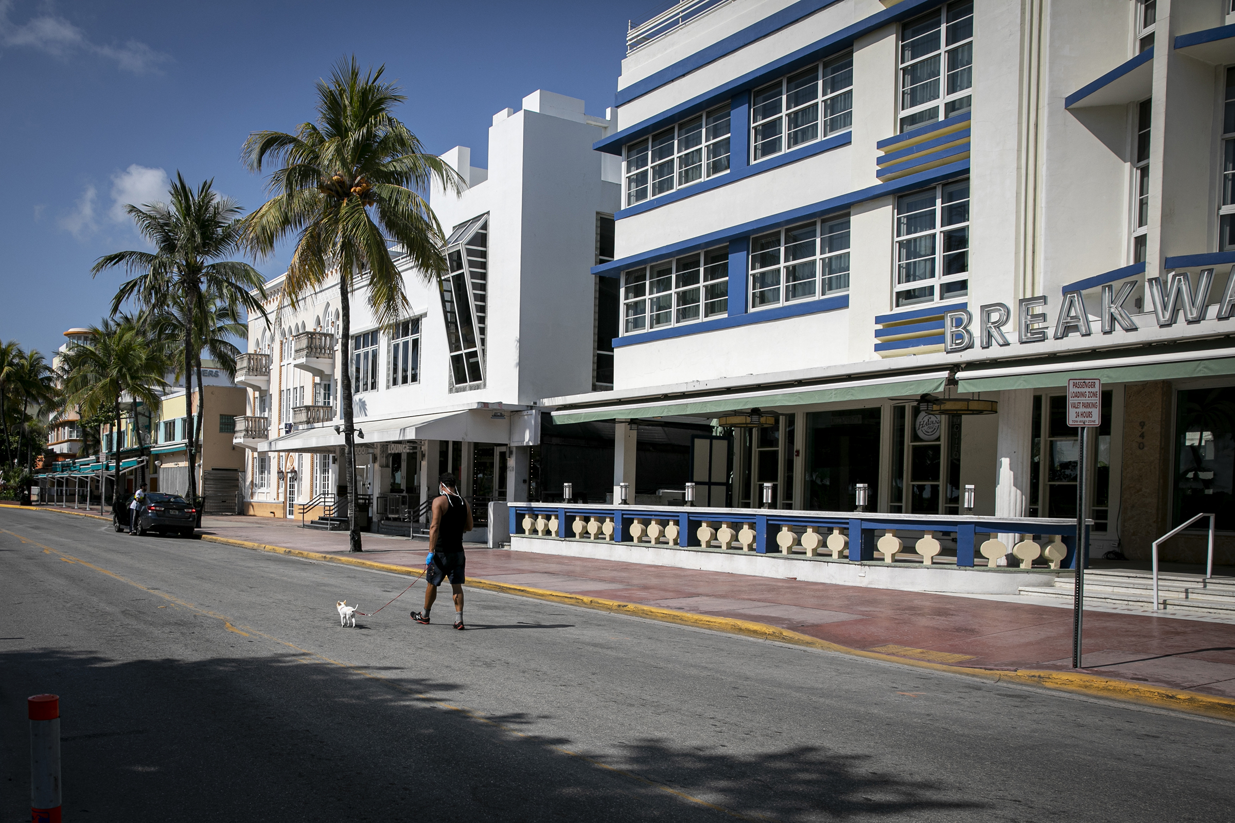 A pedestrian walks a dog in the middle of an empty street in Miami, Florida, on April 8, 2020.