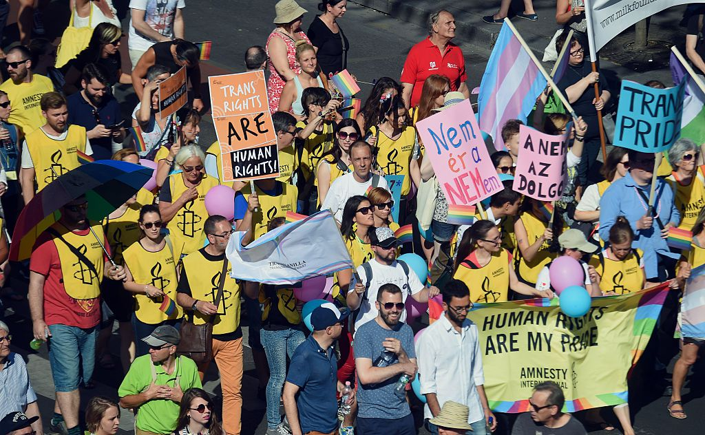 People take part in the lesbian, gay, bisexual and transgender (LGBT) Pride Parade in Budapest downtown,  on July 11, 2015.