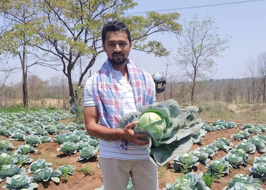 Jitendra Bangar and his cabbages in Bhiwandi, India