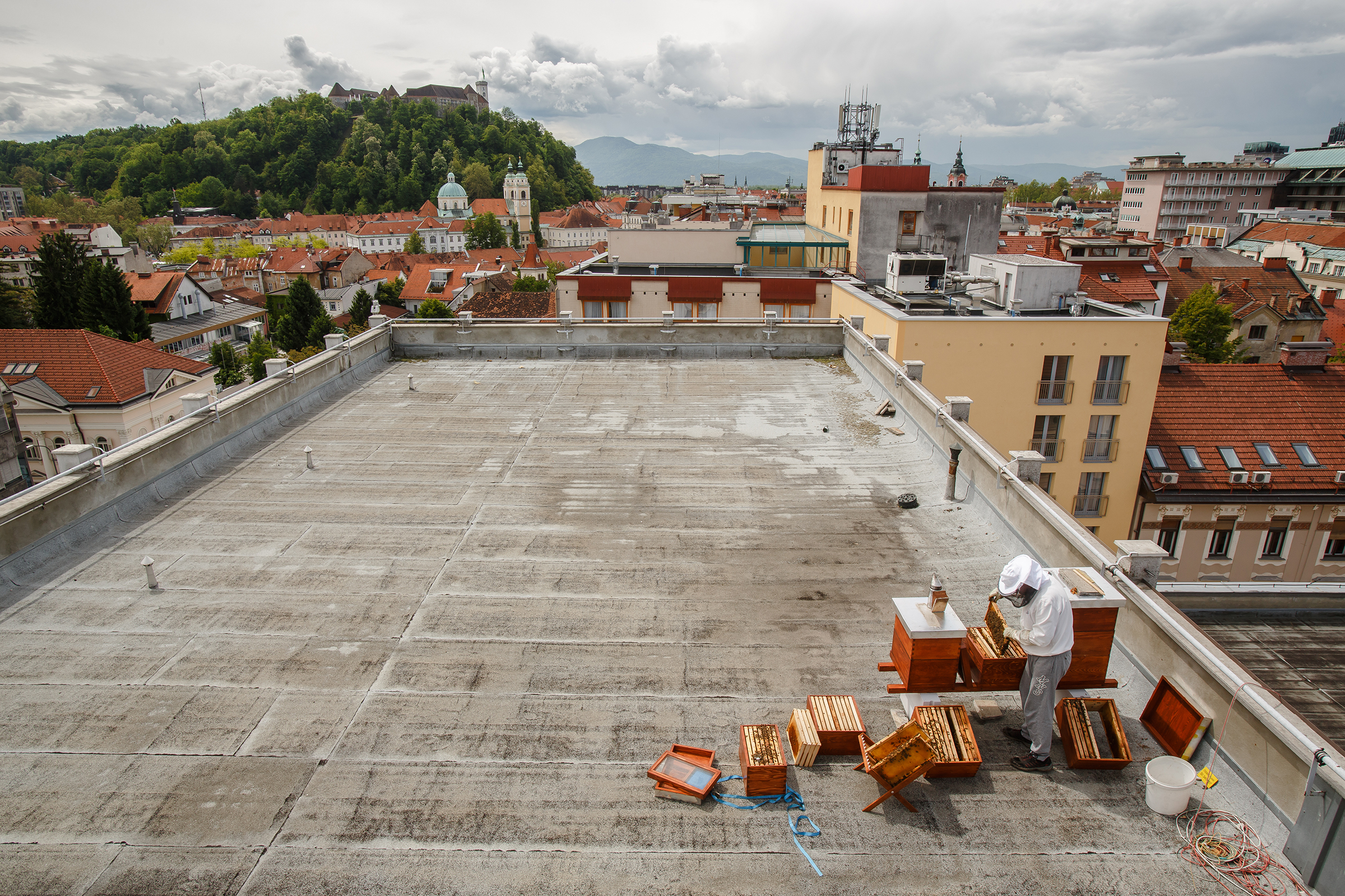 An urban beekeeper tends to apiaries on a Ljubljana rooftop. One in every 200 Slovenes keeps bees.
