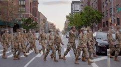 Inside NYC's Effort to Bury Its Dead