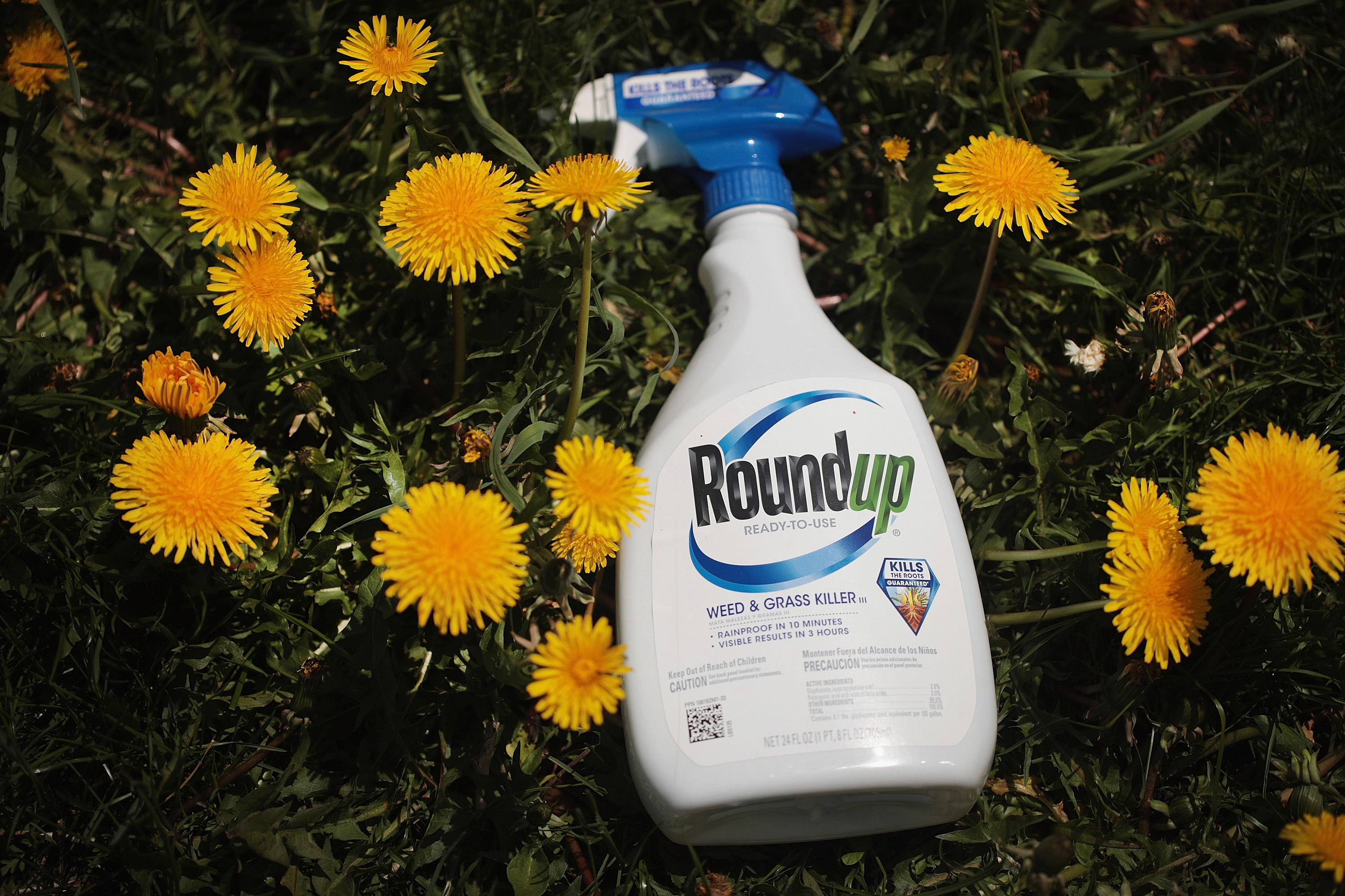 Roundup weed killer is shown on May 14, 2019 in Chicago, Illinois.