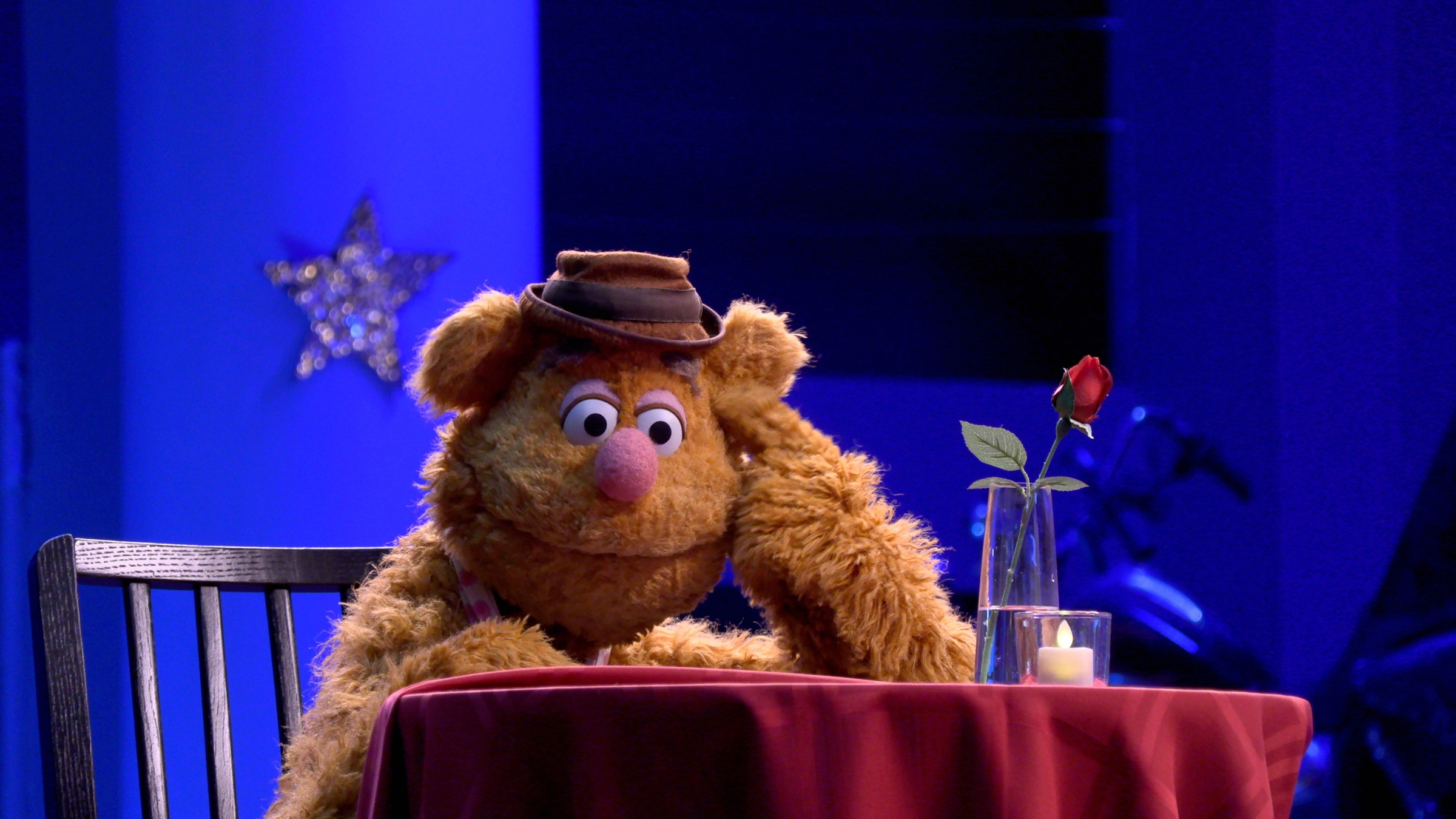 Wocka wocka! Hapless comedian Fozzie Bear returns to TV