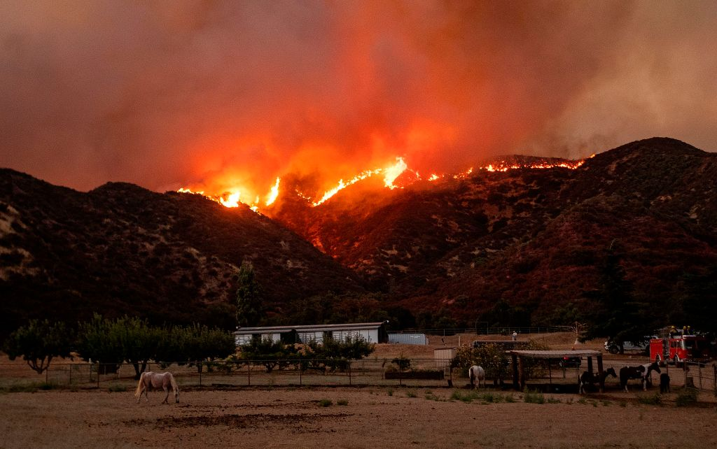 Horses graze as flames from the Apple fire skirt a ridge in a residential area of Banning, Calif., on Aug. 1, 2020.