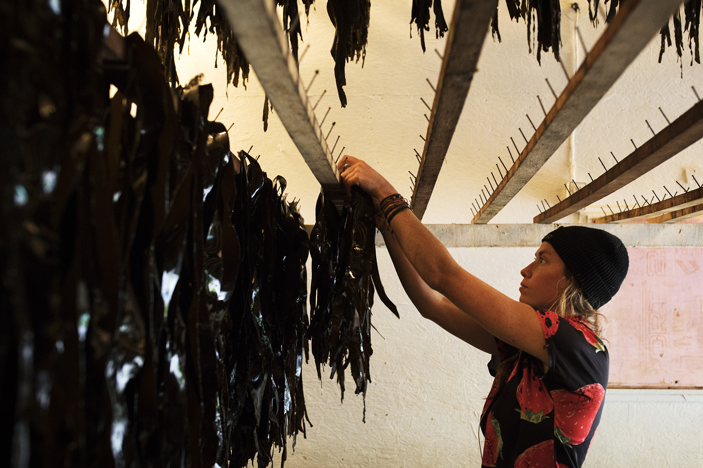 seaweed-farming-climate-09