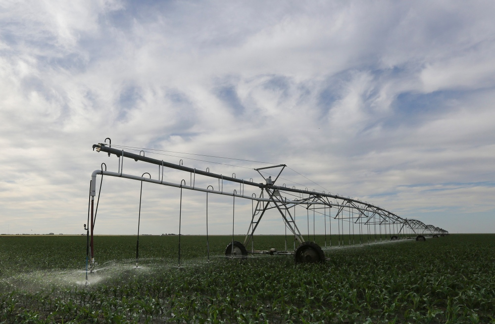 An irrigation pivot sprays water onto a young corn crop in Grant County, Kans., in 2015.