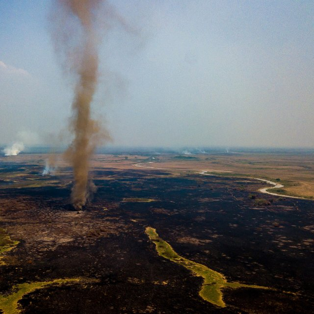 Brazil Is Burning—and the Environment Minister Is Cutting Protections