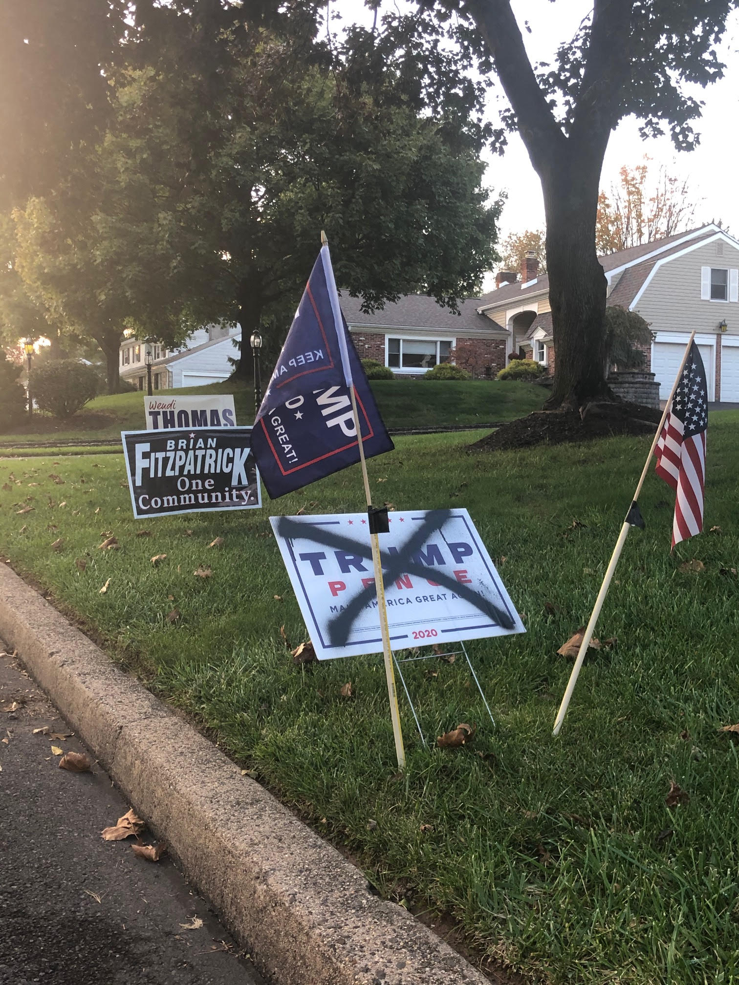 In Kathryn Jankowski's home of Bucks County, PA, front lawns are littered with competing political signs.