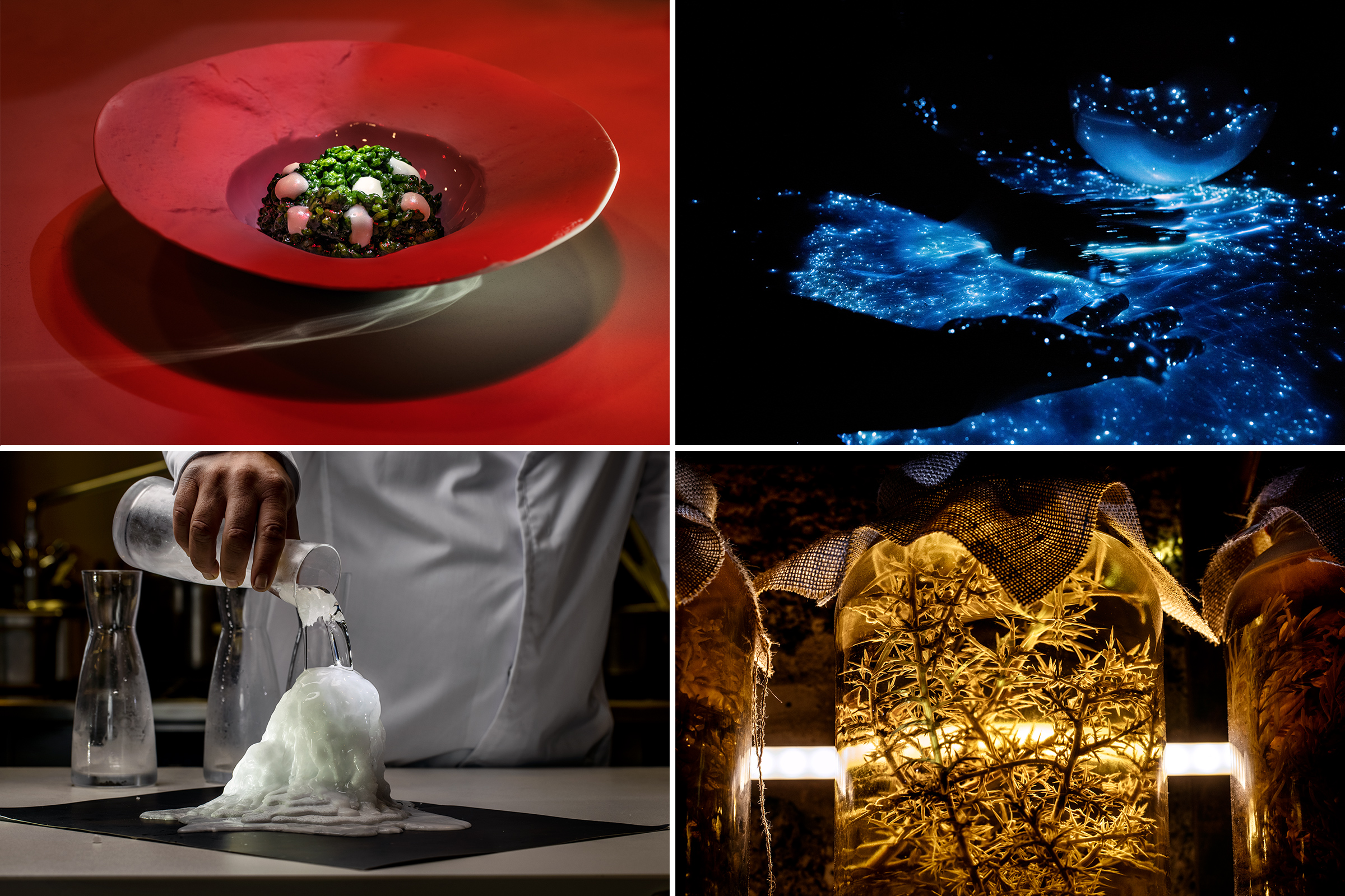 From top left, clockwise: A plankton rice dish at Aponiente; León performs Luz del Mar, mixing two proteins to get fluorescence; a halophyte plant at the restaurant lab; León performs the Sal viva technique