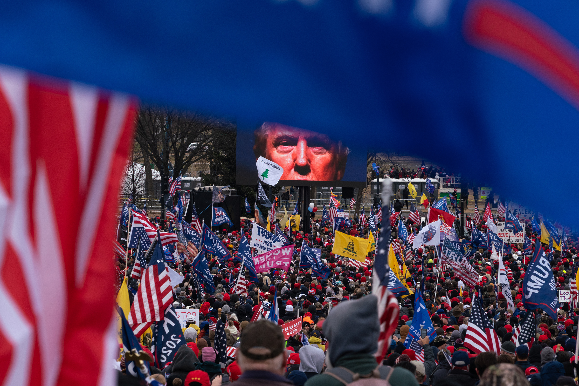 President Trump appears on a large screen at the  Save America Rally  on Jan. 6, the day that Congress was slated to certify the electoral victory for his opponent. Following his inflammatory speech, rioters stormed the Capitol.