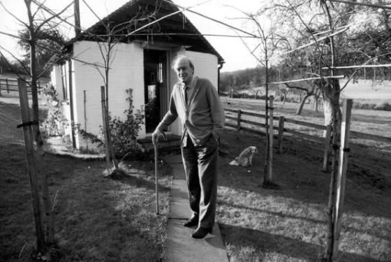 Roald Dahl holding his cane while standing outside of the shed where he wrote in Great Missenden, Buckinghamshire, England.