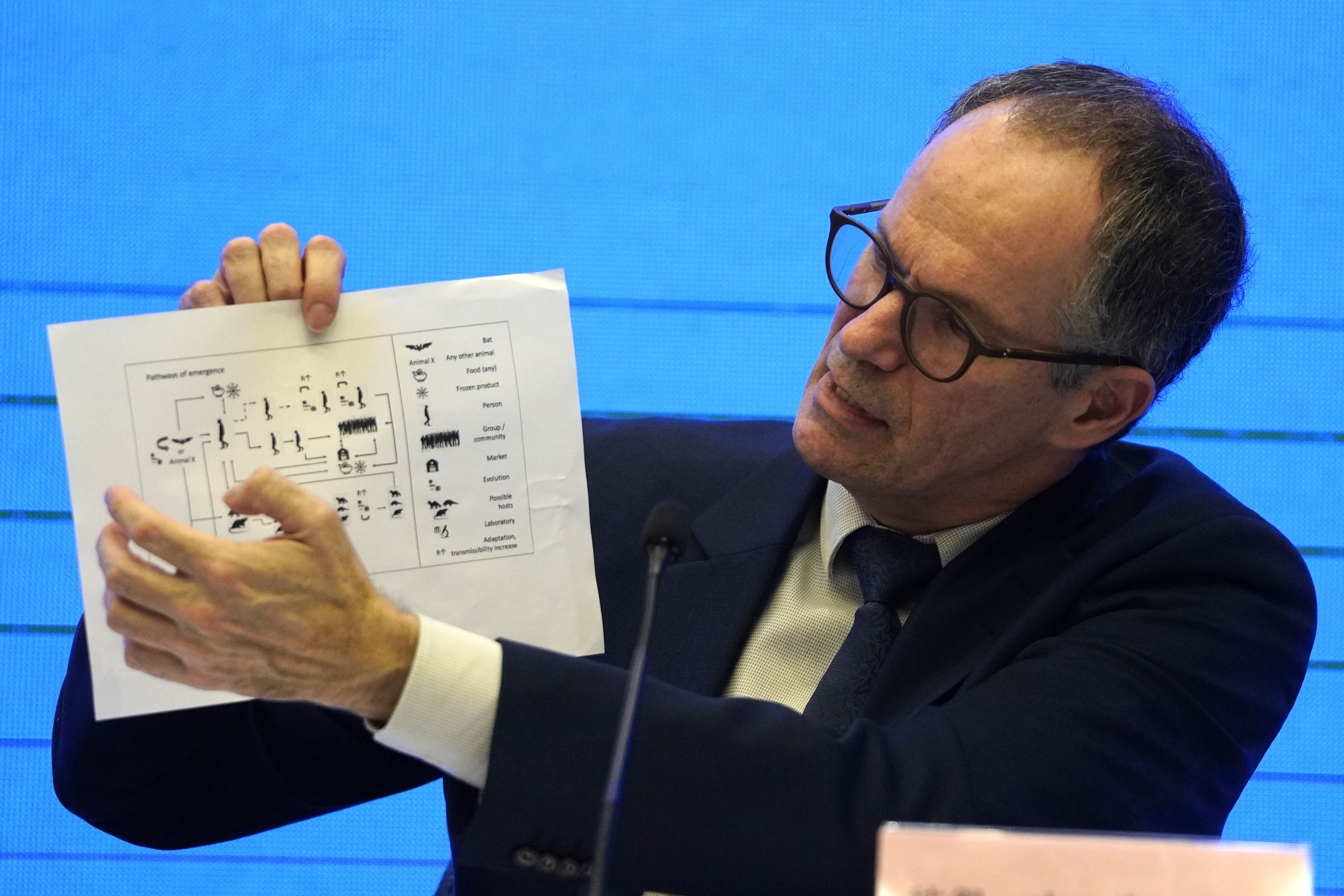In this Feb. 9, 2021, file photo, Peter Ben Embarek of the World Health Organization team holds up a chart showing pathways of transmission of the virus during a joint news conference at the end of the WHO mission in Wuhan in central China's Hubei province.