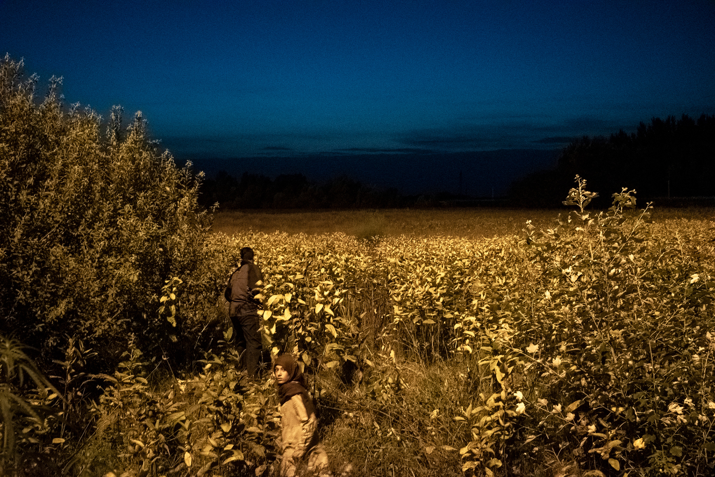 The border had closed at midnight after Hungarian officials hastily erected a barbed-wire fence, blocking thousands of Syrian, Iraqi and Afghan refugees from entering. Horgos, Serbia, 2015.