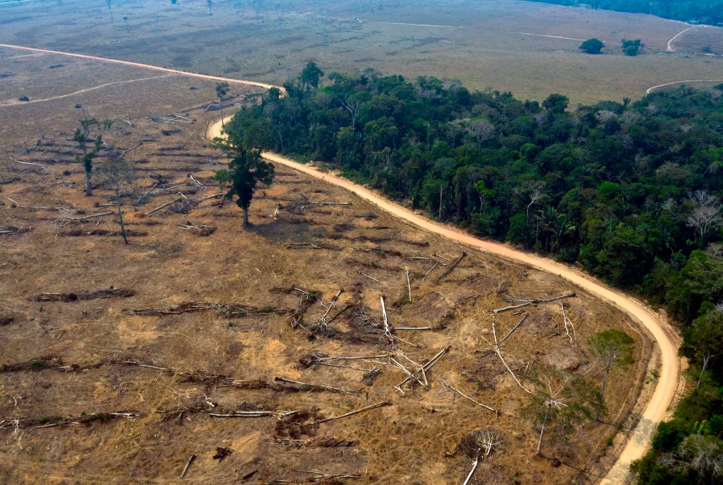 Aerial view of burnt areas of the Amazon rainforest, near Porto Velho, Rondonia state, Brazil, on August 24, 2019.