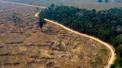 Can Biden Trust Bolsonaro to Defend Amazon?
