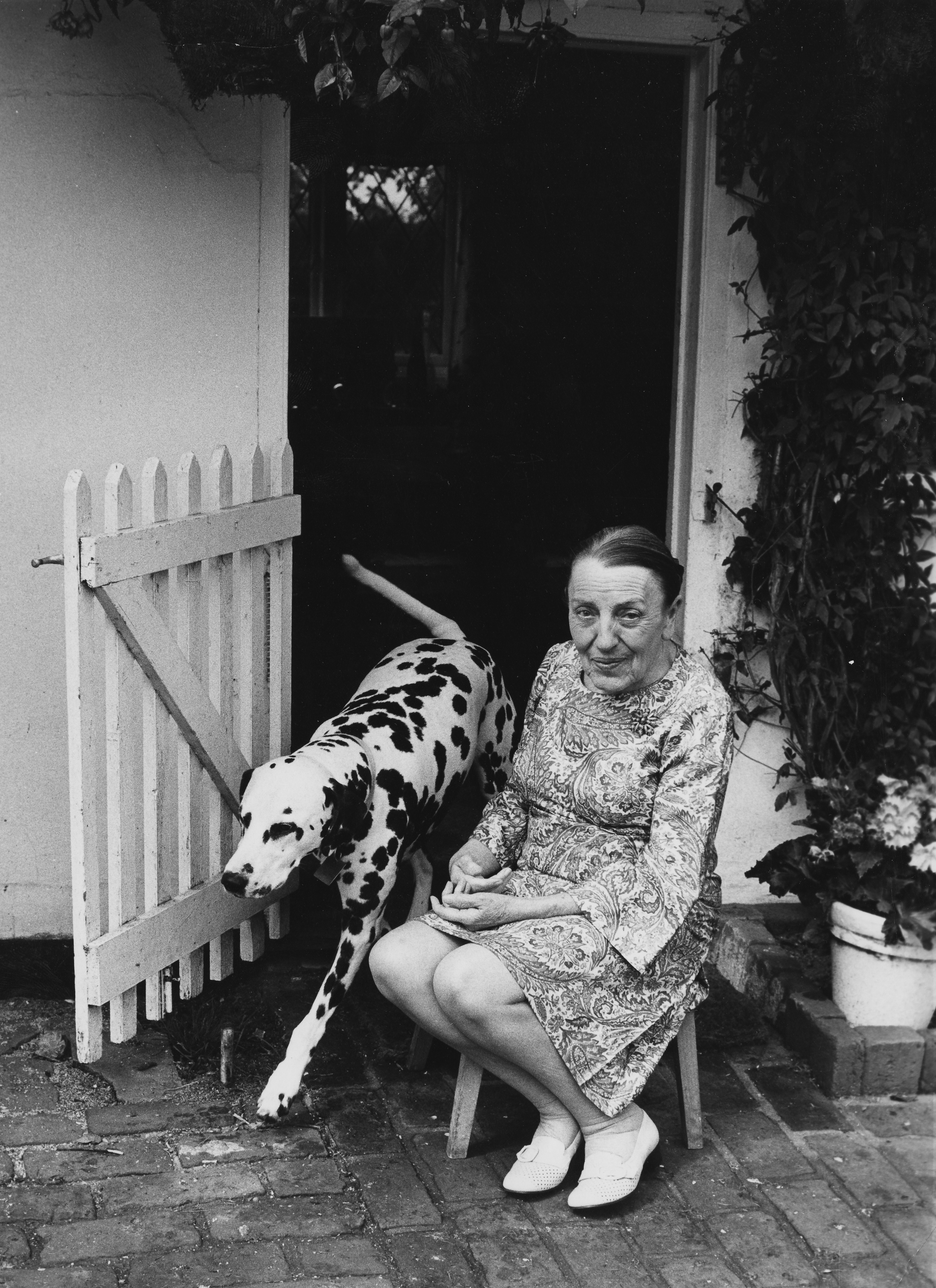 Dodie Smith, author of '101 Dalmatians', sitting outside her cottage with a pet Dalmatian in Essex, July 23, 1973