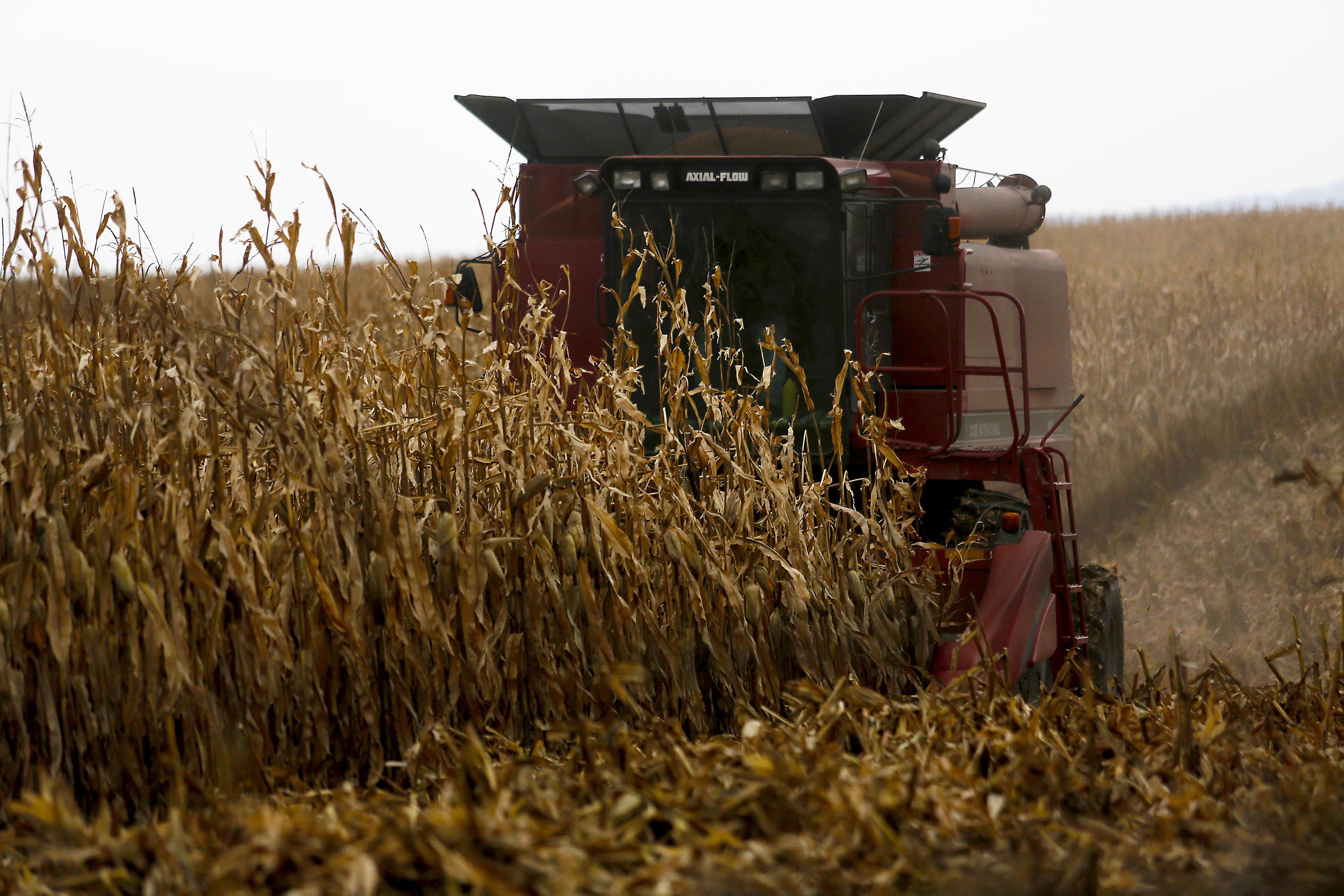 A farmer harvests crops near Sinsinawa Mound in Wisconsin, on Dec. 4, 2017.