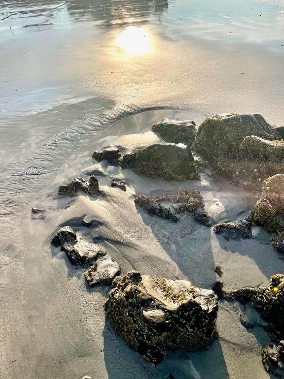 Gooch's Beach, Kennebunkport, ME