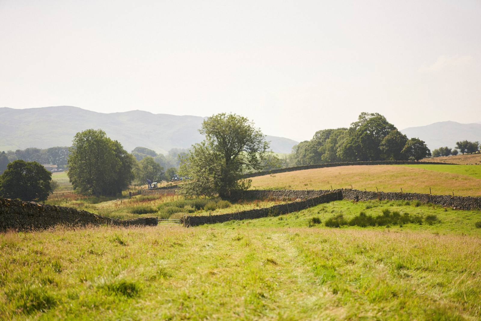 A view of James Rebanks' farm in the English countryside