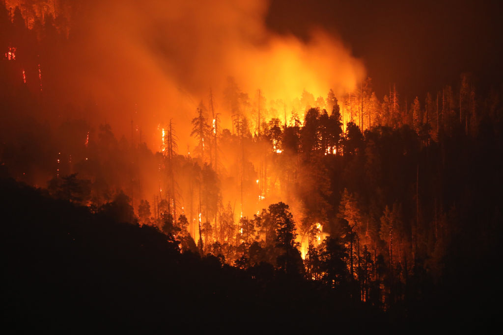 The French Fire burns in Kern County, Cali. on Aug. 21, 2021.