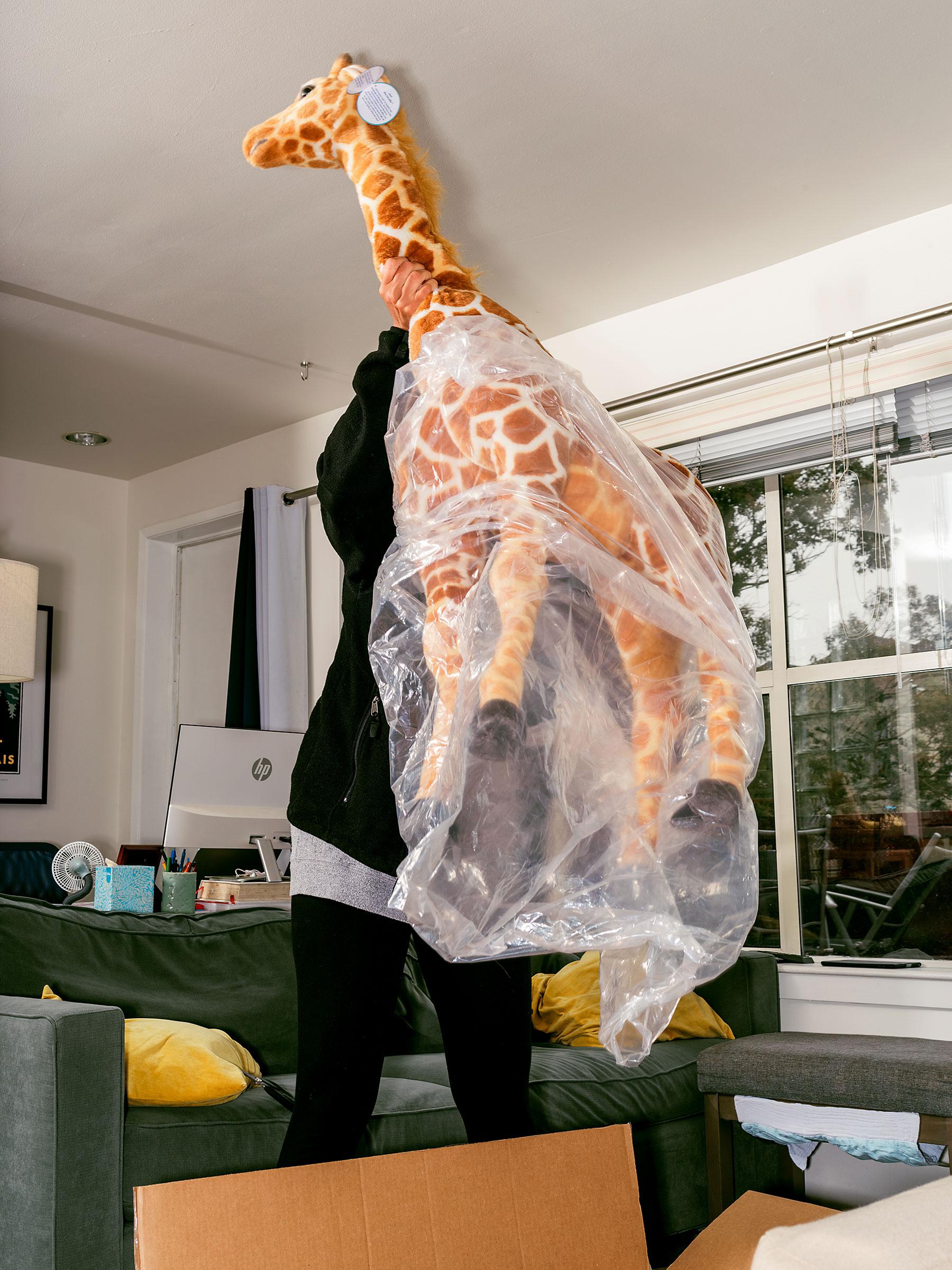 Jani the giraffe is unpacked in San Francisco.